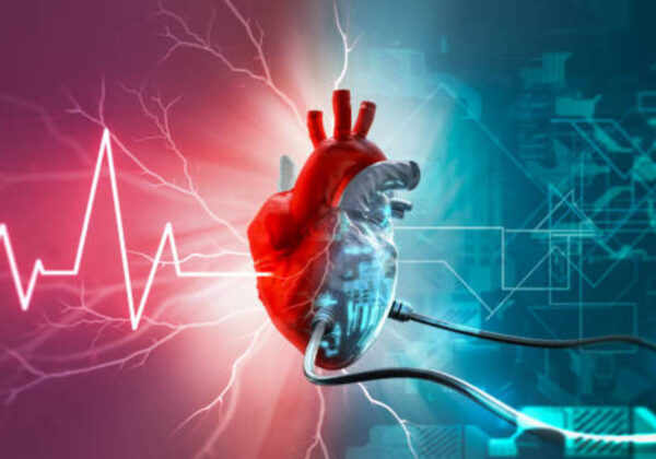 Can Artificial Heart be Possible?